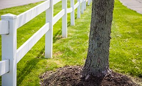 $2,592 for 80 Feet of 4' Vinyl Picket Fencing...