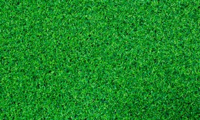 $1,299 for Sod Installation up to 1,000 Square...