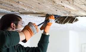 $810 for Acoustic Popcorn Ceiling Removal