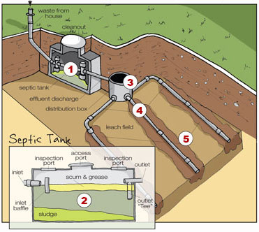 graphic shows how septic systems work