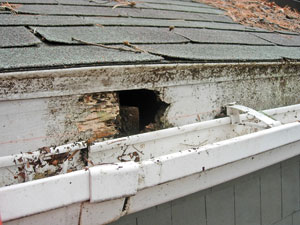 Common Roofing Problems Angies List