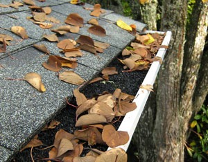 Gutter Cleaning Angies List